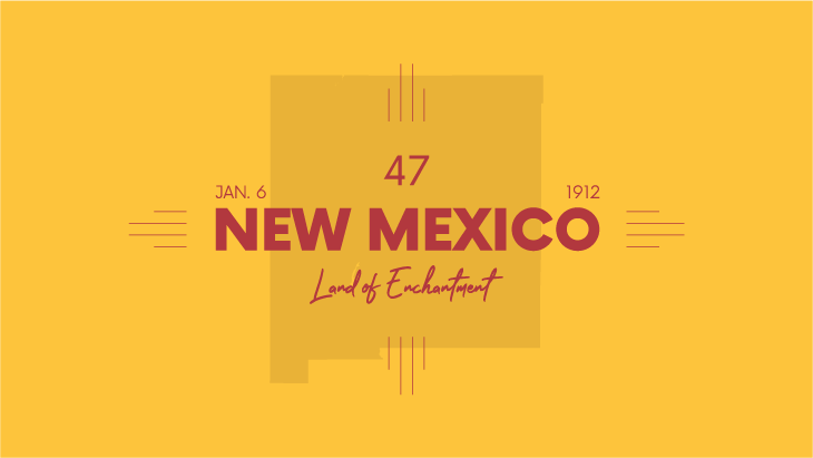new-mexico-llc